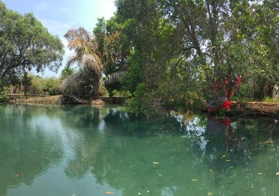 Natural swimming pool, Madagascar