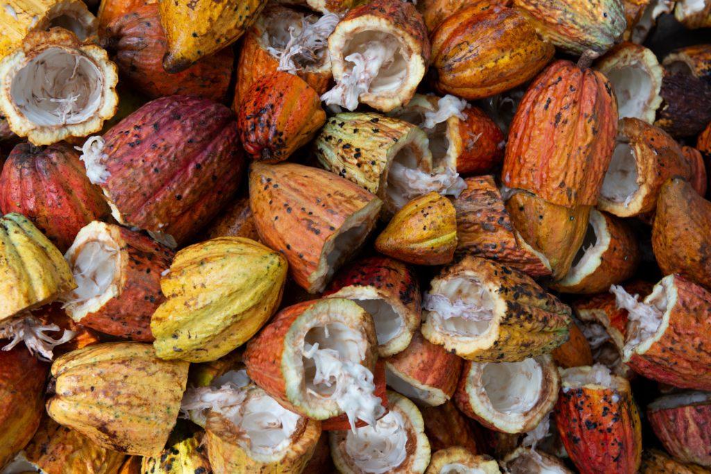 Cacao Ambanja Nosy Be